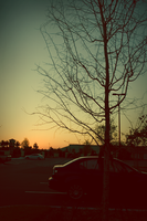 Sunset Experiment by aanoi