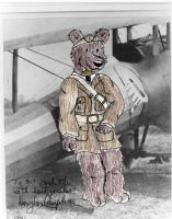 Campbear: The WWI Pilot Bear by Traxer
