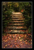 Stairs To Autumn by Creepling