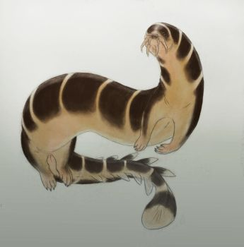 Fat loach dragon by Ramul
