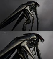 Male Muto by skybolt