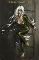Black Cat by Kerong