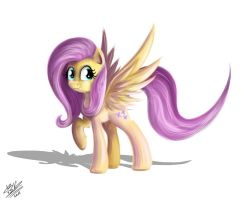 Fluttershy) by B---K