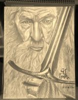 Gandalf by Joezart