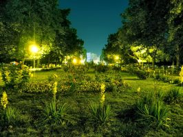 Crangasi Park at Night by UNBREAKABLE2005