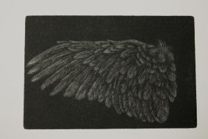 soft mezzotint wing by SwarzezTier
