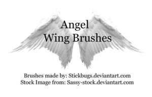 Wing Brushes - DONT FAVE HERE by Stickfishies-Stock
