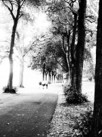 park by BUBIMIR-39
