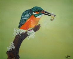 Kingfisher1 by WendyMitchell