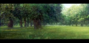Hyde park by leventep