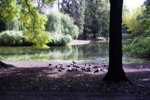 Stadtpark by xinax