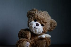 Teddy Bear by davbir