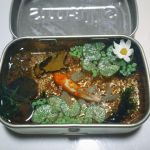 Commission: Altoids Smalls Koi Pond by Bon-AppetEats