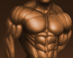 Bodybuilder Torso by Vladracs