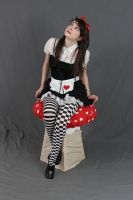 Dark Alice in wonderland 18 by MajesticStock