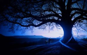 Blue Tree by Wolfsitize