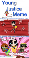 Young Justice meme by vane-elric