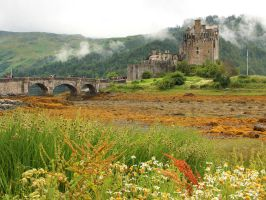 Eilean Donan Castle and Mist by AgiVega