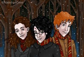 the trio in winter by rimorob