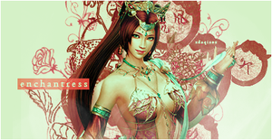 Dynasty Warriors 8 Signature by PeachMilktea
