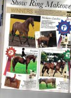 Featured in Horse Deals Magazine pg160 by angel-brittony-adams