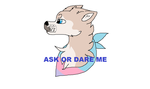 ask or dare me! by wafflecatdraws