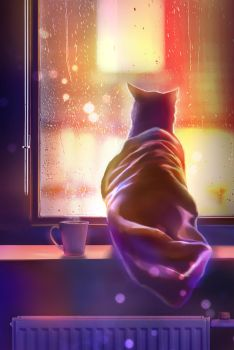 warm cat on the window by Nneila