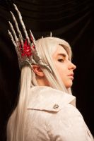Thranduil Mirkwood cosplay [1] by the-ALEF