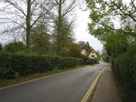 Road leading to Dedham High Street from the Meadow by Anita-Sanderson