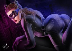 Cat womaN - TDKR by Danthemanfantastic