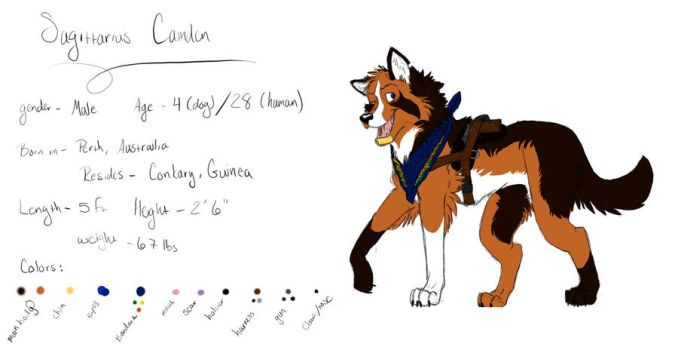 Sagittarius Camden Color Ref by KaoxBooth
