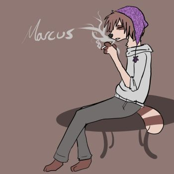 Marcus the Druggie Raccoon by Fawkesido