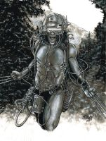 Weapon X Commission by Frisbeegod