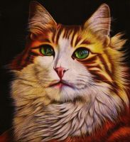 Chalk Cat Drawing 2 by HelenFelicia
