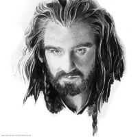 Thorin Oakenshield by guy-who-does-art