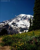 mount rainier by souk1501