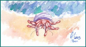 Hermit Crab by SineSquared
