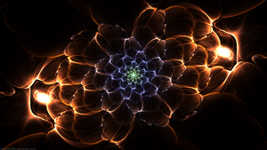Auroral Flower by Shroomer83
