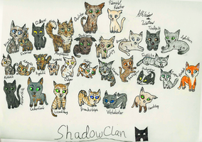 ShadowClan Cats - Endless Storm by MyNameIsWaterDummy