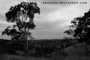 a differing point of view by serasfan