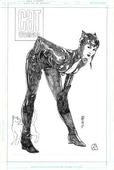 Catwoman for AH by Thegerjoos