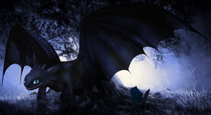 Shadow the Night Fury ~ Edit For Bloodniss! by Loycee