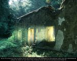 a house in the forest premade by Nataly-Stock