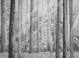 Pine Forest by aakritiarts