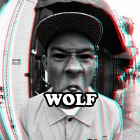 Tyler, The Creator - Wolf by smalld-gfx