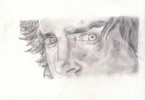 Frodo Baggins -close up- by LillTommy