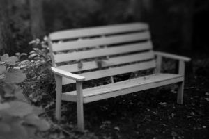 x - Bench by TriinErg