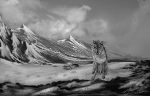 Wolf Snow by lwatson74