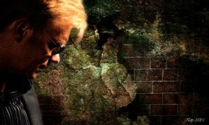 The Cult of Horatio Caine by Heishy