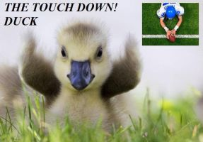 The Touch Down Duck by YamiYAlexander4